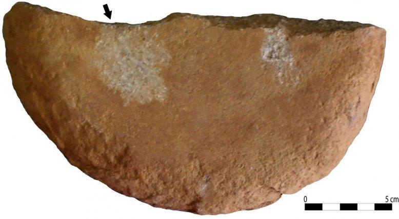 Meule trouvée lors de la fouille préventive réalisée par l'INRAP, Route des Plages, à Rémire-Montjoly (Guyane).