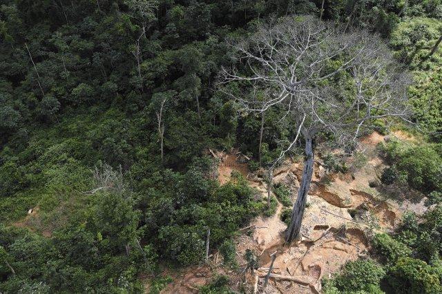 Survol d'un site d'orpaillage clandestin dans le cadre d'une opération de surveillance du territoire. Août 2017.