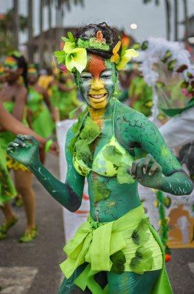 BIODIVERSITE ET CULTURE : Parade un Dimanche de Carnaval, Cayenne