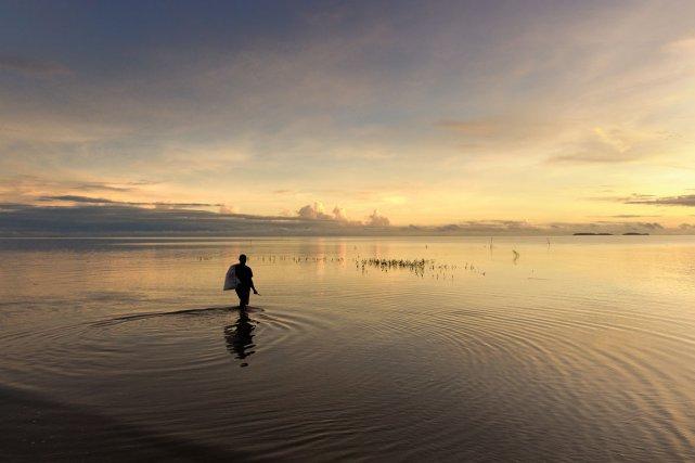BIODIVERSITE ET CULTURE : A l'aube, un pêcheur muni d'un sac et d'un couteau part relever ses filets sur une mer étale (Kourou)