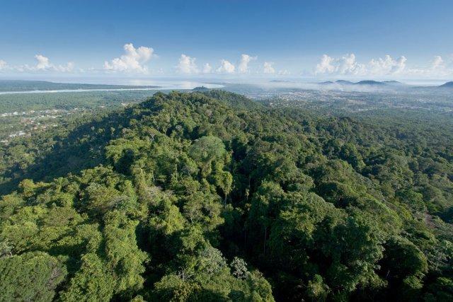 Vue aérienne sur le Mont Grand Matoury avec en arrière-plan la rivière et la ville Cayenne.