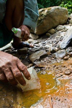 Pétrole naturel en surface dans le parc national Amboro en Bolivie.