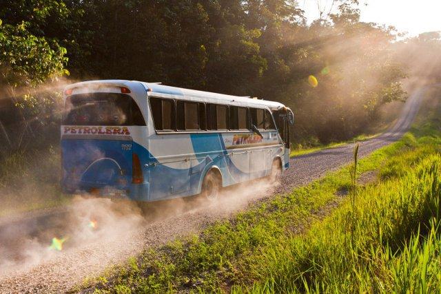 Les routes ont découpé les paysages afin de permettre l'accès aux différents sites d'exploitation. En plus de scinder la forêt, ces routes ont permis aux populations locales d'aller chasser plus loin dans la forêt, au détriment de nombreuses espèces menacées.
