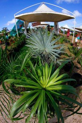 Portfolio salon de l agriculture 2013 une saison en guyane - Tarif salon agriculture ...