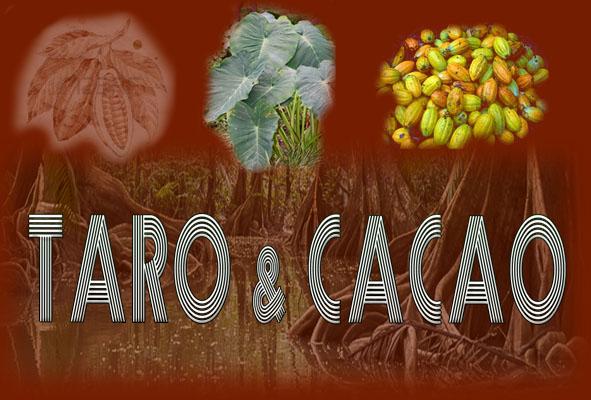 Café des Sciences Taro et Cacao : Le 24 juin 2014