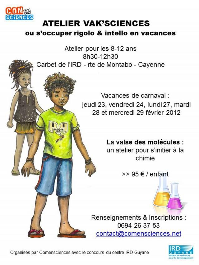 Stage de chimie pour les 8-12 ans: la valse des molécules ! (Vak'Sciences de Carnaval)
