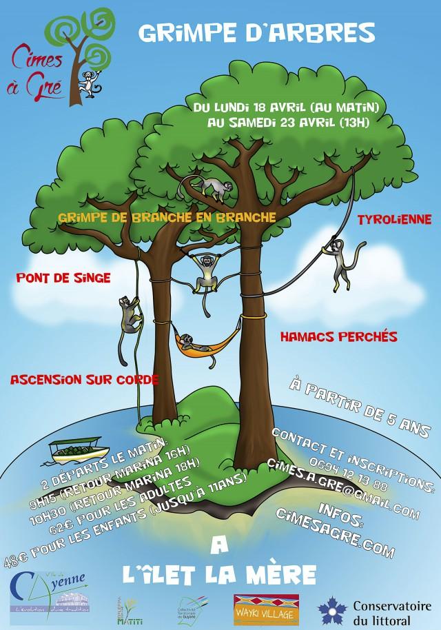 Grimpe d'arbre :sur l'îlet la mère
