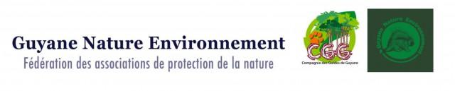 Extraction minière sur la Crique Nelson : Menace pour le bassin versant du Kourou