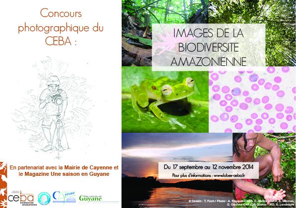 Le Ceba lance un concours photo en partenariat avec Une saison en Guyane : Images de biodiversité amazonienne