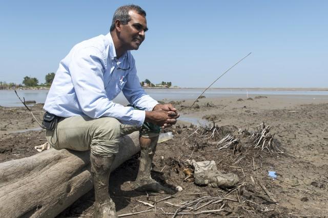 Suriname : Des digues filtrantes pour contrer l'érosion et sauver la mangrove