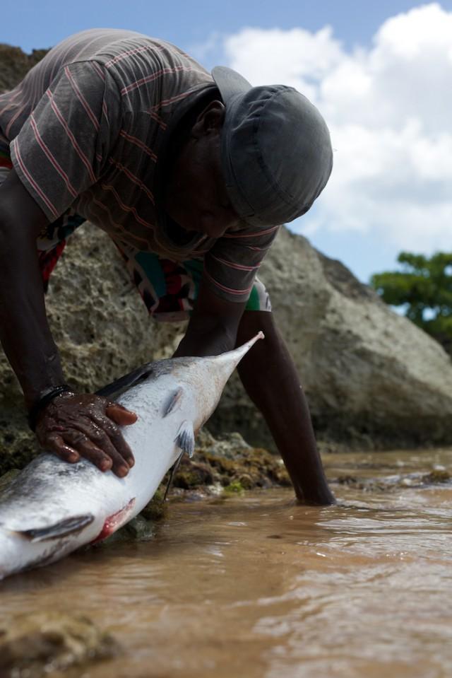 Santé: les Antilles toujours malade du Chlordécone