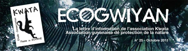 Lettre d'information de Kwata : Ecogwiyan N°25