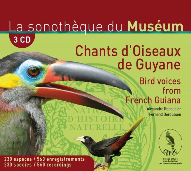 Chants d'oiseaux : de Guyane