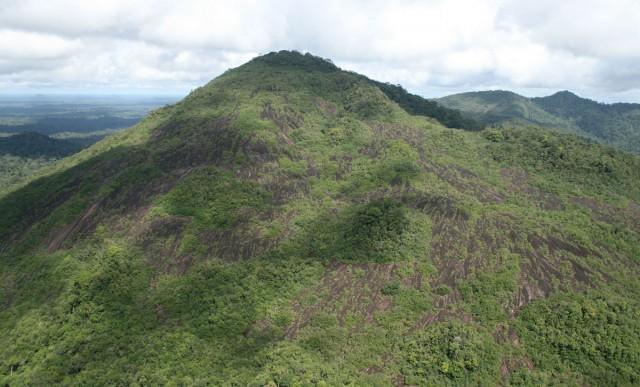 Réserve naturelle de la Trinité : Découverte probable d'un fossile vivant, une espèce de xenarthre disparue...