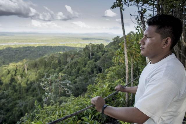 Guyana : La forêt ne perd pratiquement plus de terrain