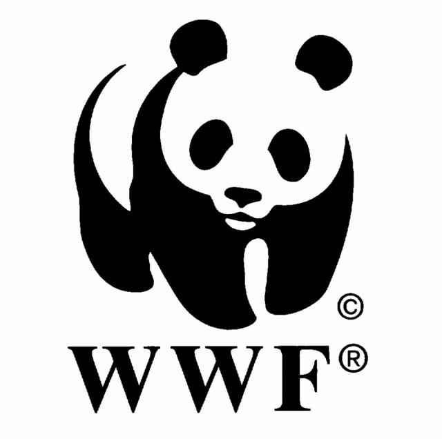 Orpaillage illégal : Le WWF s'insurge face à l'assassinat de deux militairessur le site de Dorlin (Centre Ouest Guyane)