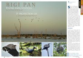BIGI PAN : Entre exploitation économique & protection de l'environnement
