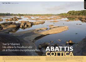 Abattis Cottica: On the Maroni river, ahistoric site of outstanding biodiversity