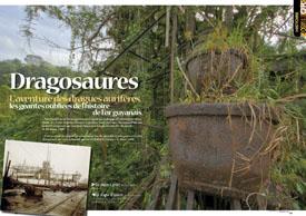 Dragosaures : L'aventure des dragues aurifères, les géantes oubliées de l'histoire de l 'or guyanais