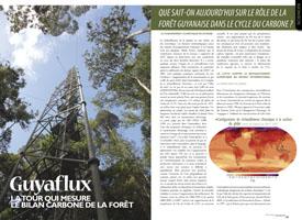Guyaflux : La tour qui mesure le bilan carbone de la forêt