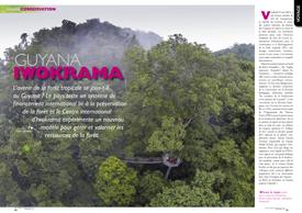 Iwokrama: une quête pour préserver la forêt des Guyanes