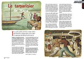 Le tamarinier de Mana