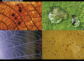 Portfolio macro textures naturelles