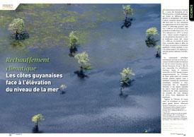 Réchauffement climatique : Les côtes guyanaises face à l`élévation  du niveau de la mer