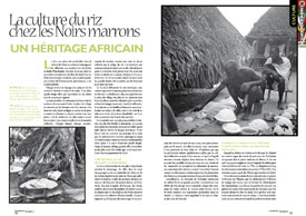 La culture du riz chez les Noirs marrons:un héritage africain