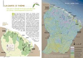 L`aménagement forestier en Guyane : une pierre d`angle de la gestion durable des forêts