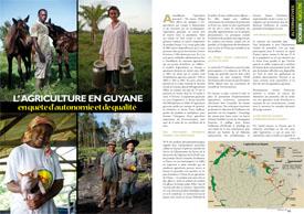 L'agriculture en Guyane : En quête d'autonomie et de qualité