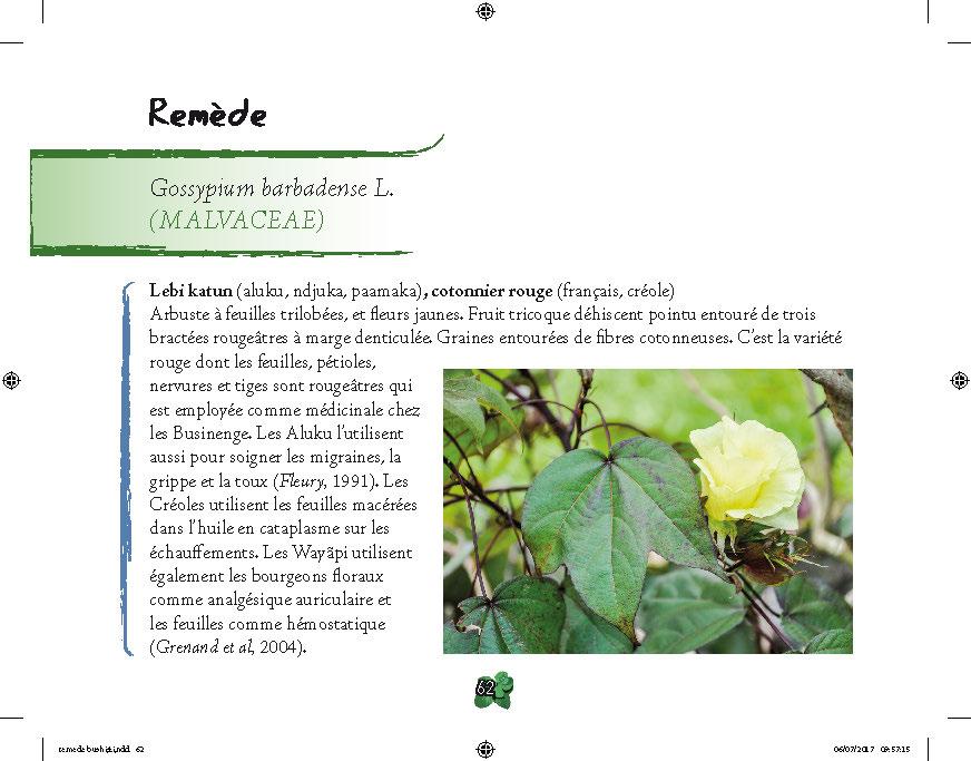 Pages de remede_busi_v12_PRINT_Page_2