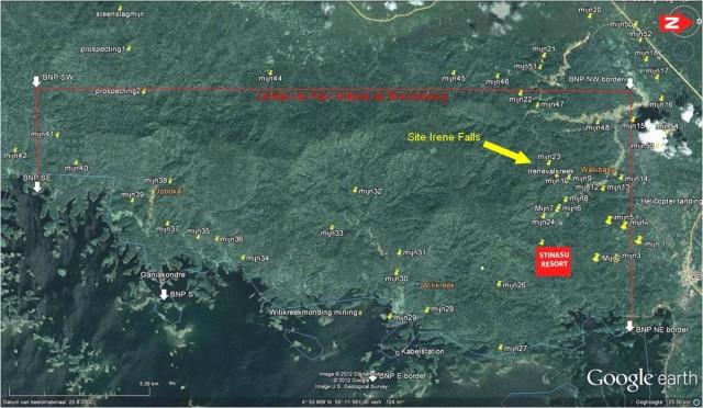 Activité minière illégale au sein du Parc Naturel du Brownsberg : Le WWF Guianas alerte le Gouvernement du Suriname