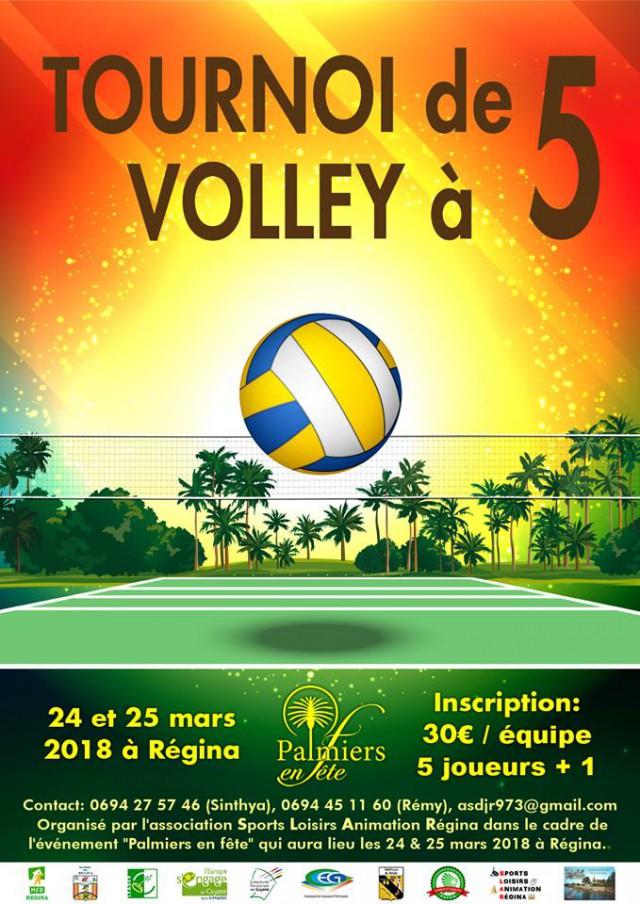 Tournoi de volley 2018