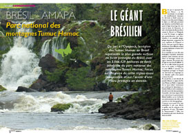 Parc national des montagnes Tumuc Humac: Le géant brésilien