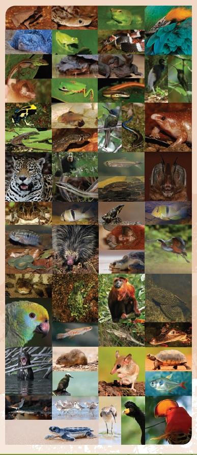 Fête de la Nature : exposition sur les Zones Naturelles d'Intérêt Écologique Faunistique et Floristique