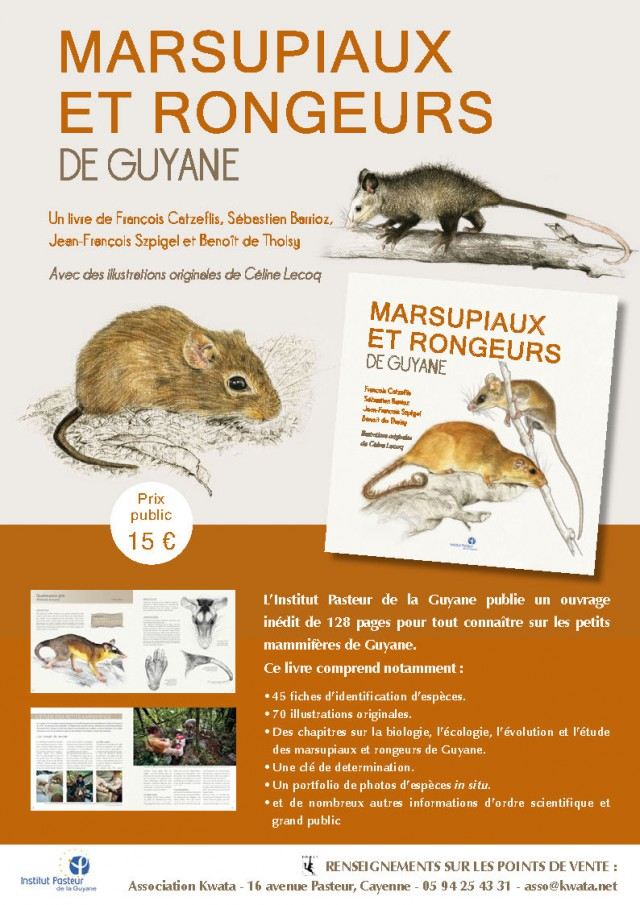 Marsupiaux et rongeurs :de Guyane