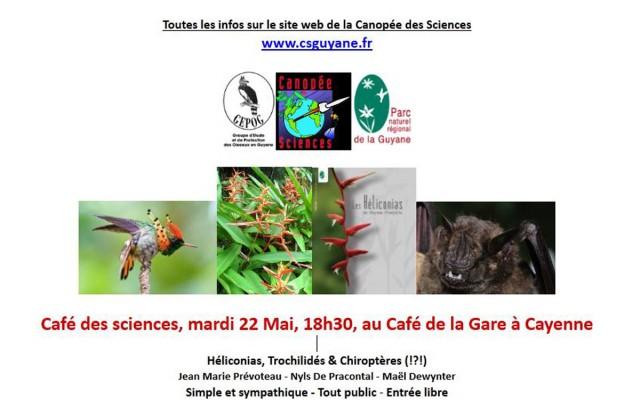 Café des sciences : Les relations entre champs fleuris, colibris et chauves souris