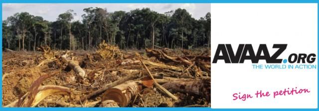 Pétition Avaaz contre : l'exploitation de l'or dans le Parc amazonien de Guyane