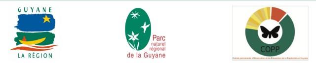 Papillonite : Alerte lancée pour début juillet entre L'île de Cayenne et le bourg de Roura