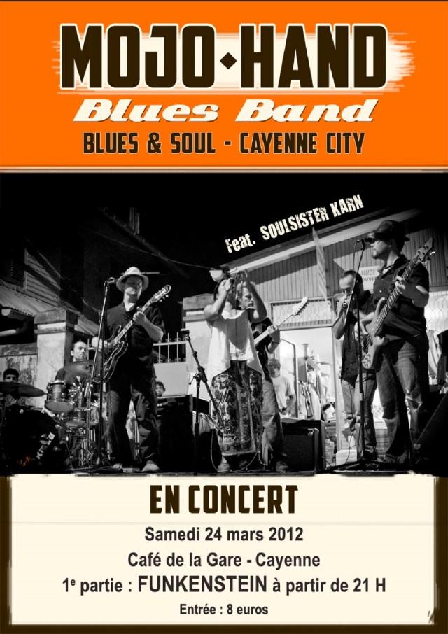 Musique Live : Concert de Blues à Cayenne