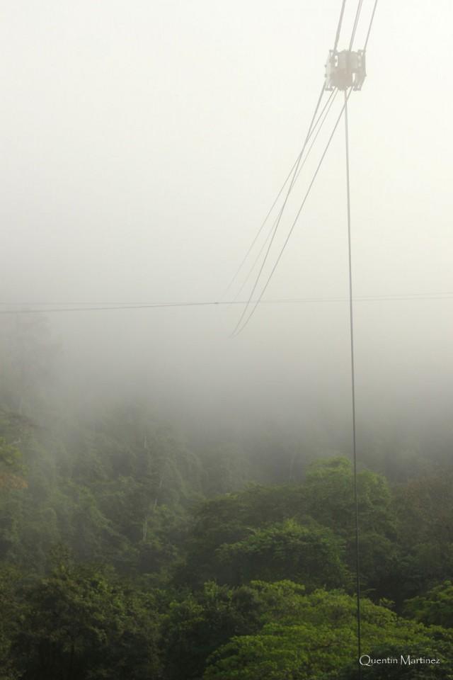 Mise en service du COPAS : en Guyane, un dispositif d'accès permanent à la canopée tropicale pour les chercheurs du monde entier.