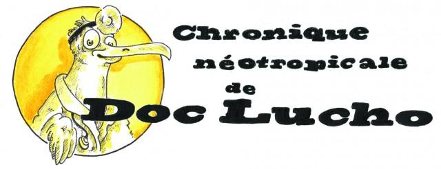 Le Covid19 en Guyane : Analyse de la situation au 25 mars par l'infectiologue Dc Epelboin