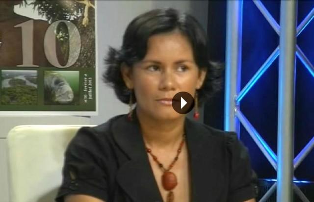 Voir en ligne l'émission Focus Infos sur ATG du vendredi 15 mars 19h : une émission spéciale Une saison en Guyane