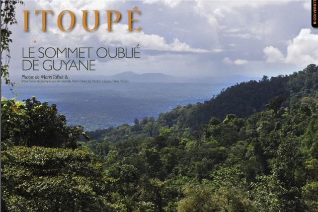 Retour :sur le Mont Itoupé