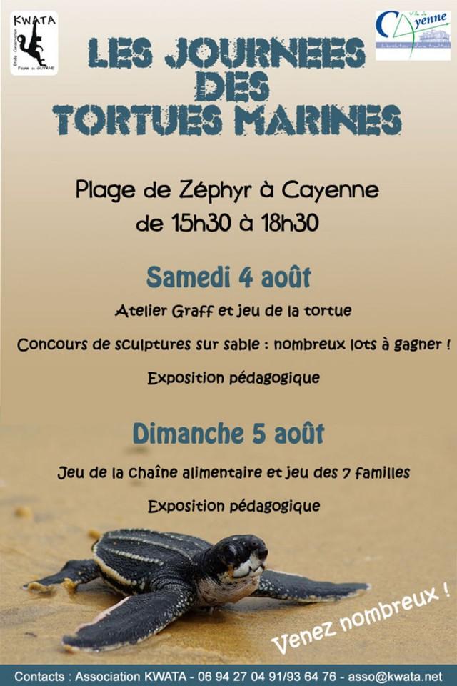 Animation : Journées des tortues marines sur la plage de Zéphyr les 4 et 5 août