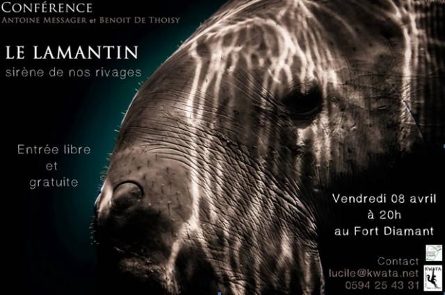 Conférence : Le Lamantin sirène de nos rivages