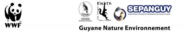 Interruption des prospections pétrolières au large de la Guyane : une décision responsable, et d'intérêt collectif.