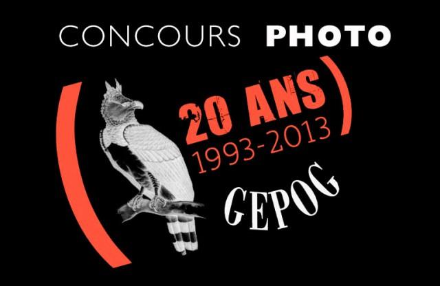 Concours photo ornitho : à l'occasion des 20 ans du GEPOG