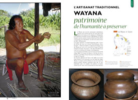 Traditional Wayana Crafts : part of humanity's heritage to be protected